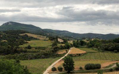 Sentiers balisés Oraison en Provence